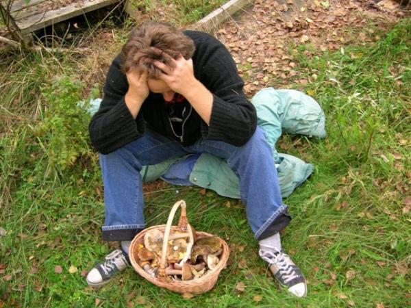 Замесяц вТамбовской области грибами отравились восемь человек