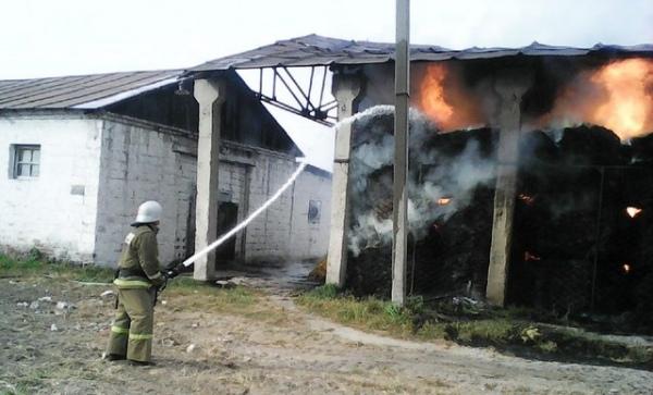 ВКурской области из-за шалости детей сгорело 20 тонн сена
