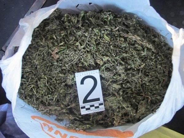 Ужителя Курского района всарае отыскали крупную партию марихуаны