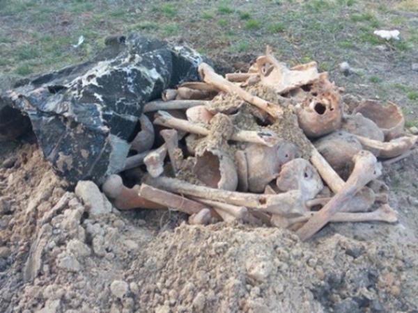 На приусадебном участке нашли 8 человеческих черепов