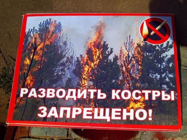 В Курске запретили жарить шашлыки на природе