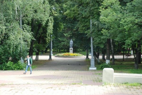 Красная площадь Курска может лишиться голубых елей