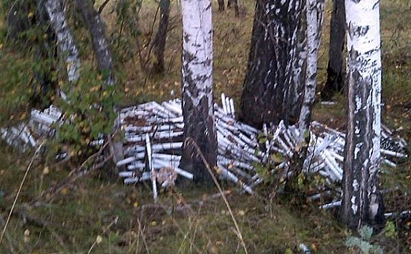 В Железногорском районе ликвидировали свалку ртутных ламп