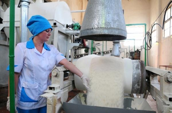 Аграрии Курской области завершили уборку сладкой свеклы