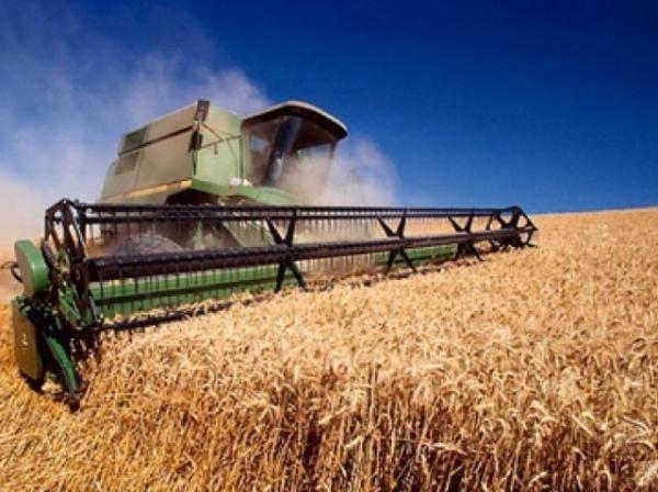 В Курской области увеличивается объем производимой продукции