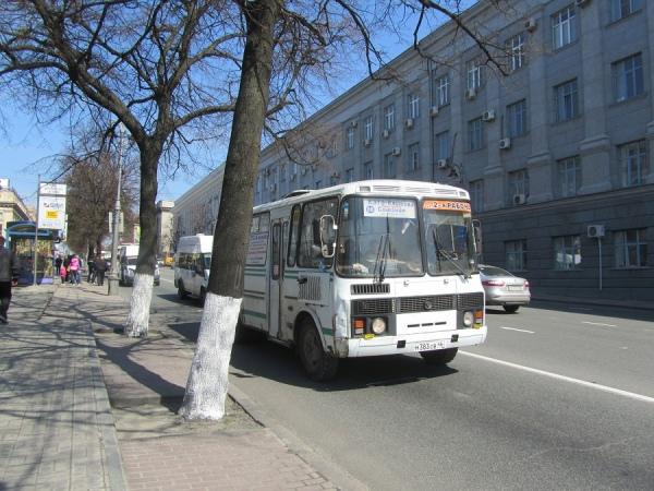 На двух маршрутах автобусы большой вместимости заменили ПАЗиками