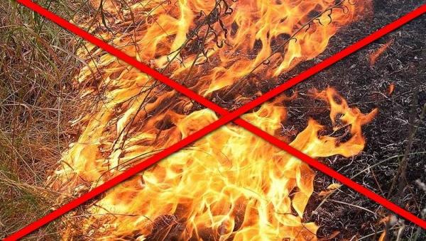 В Курской области отменили особый противопожарный режим