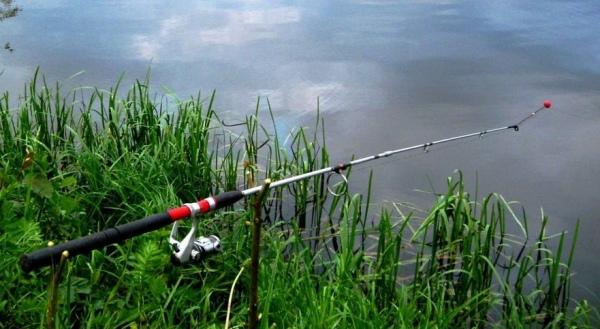 Во Льгове рыбака убило током
