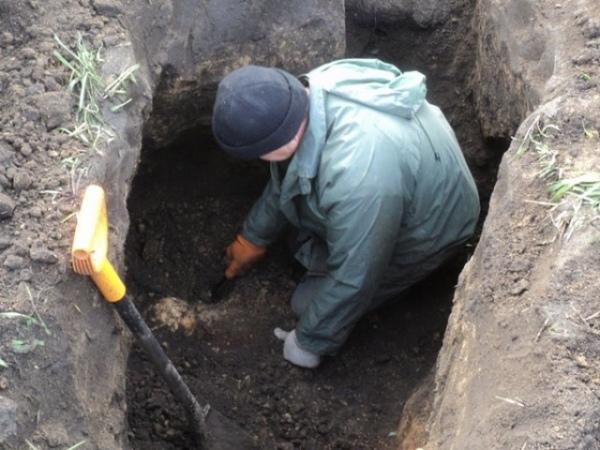 В Поныровском районе нашли останки 19 советских солдат и обломки самолета
