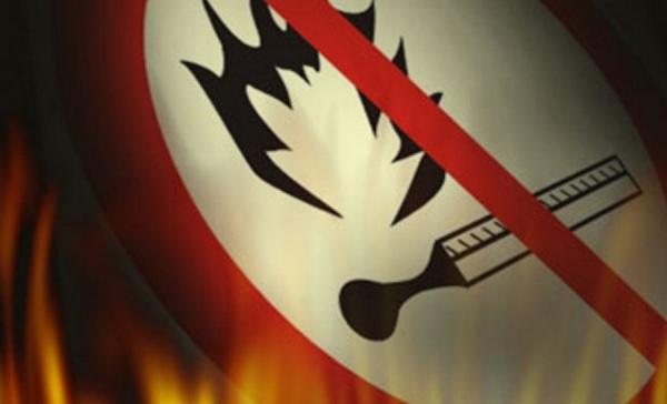 В Мокве из-за непотушенной сигареты загорелся лес