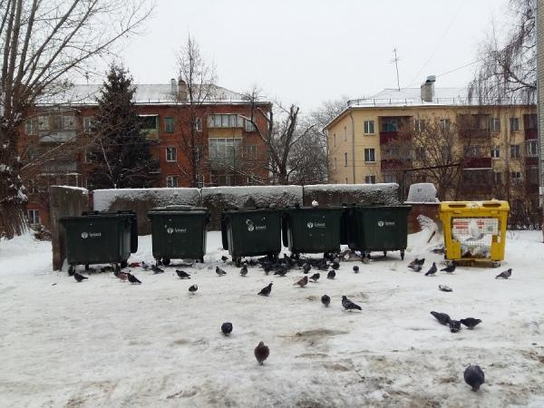 В Курске отложили обсуждение повышения платы за содержание жилья