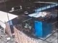 Медведь напал на женщину под Курском (видео)