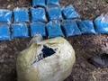 В Курской области полиция обнаружила тайник с 38 килограммами наркотиков